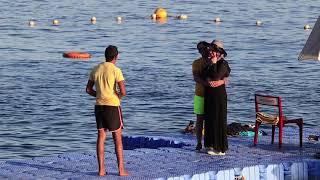 Snorkeling Reefs Sharks bay Egypt Sharm El Sheikh Red sea