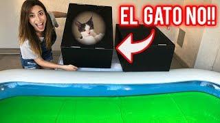 NO EMPUJES LA CAJA INCORRECTA A LA PISCINA DE SLIME   ESTABA EL GATO!?   Lyna Vlogs