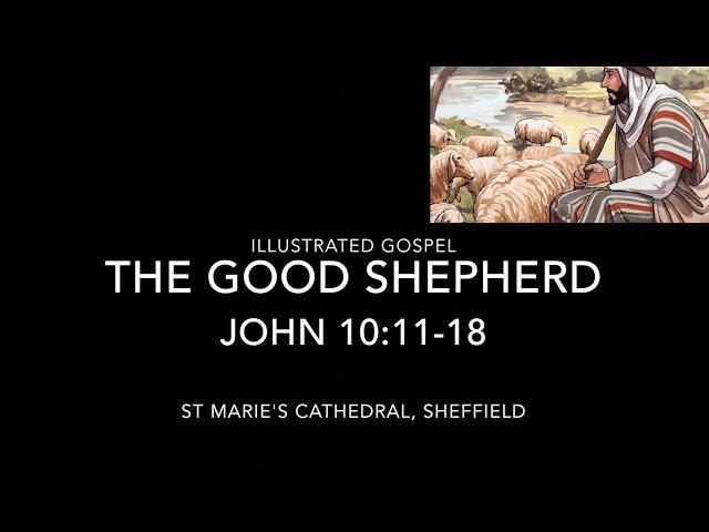 The Good Shepherd / John 10:11-18 / Illustrated Gospel & Reflection / 4th Sunday of Easter / 23Apr21