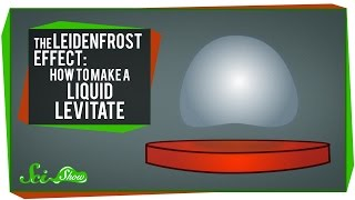 The Leidenfrost Effect: How to Make a Liquid Levitate