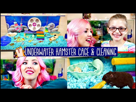 HAMSTER CAGE TOUR & CAGE CLEANING | UNDERWATER SEA CAGE THEME | My Daughter makes an Appearance!