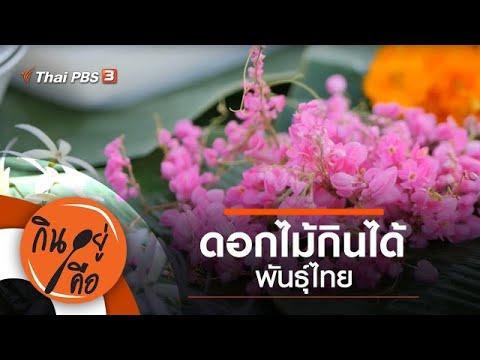 ดอกไม้กินได้พันธุ์ไทย : กินอยู่คือ [CC] (5 ธ.ค. 63)