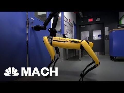 Robot Dog Opens Door For Friend This Boston Dynamics Robot