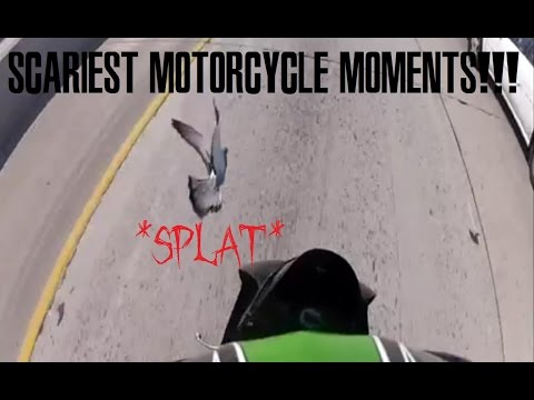 My Most SCARIEST Motorcycle Moments + R.I.P. PIGEON