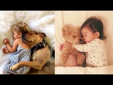 Cute Dogs & Babies Sleeping Together - 😍 Soo Lovable Video Ever