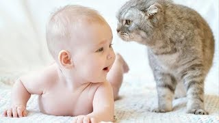 MOST Crazy Cats Annoying Babies, If You Laugh You Lose Challenge | BABY AND PET