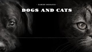 Damien Deshayes - Dogs and Cats [Light Music / Jazz]