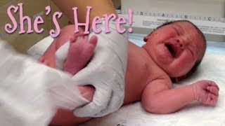 BABY SQUISH IS HERE!!