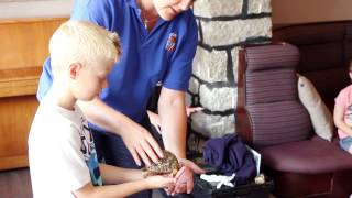 Kids activities at the Esplanade Hotel - Newquay Zoo