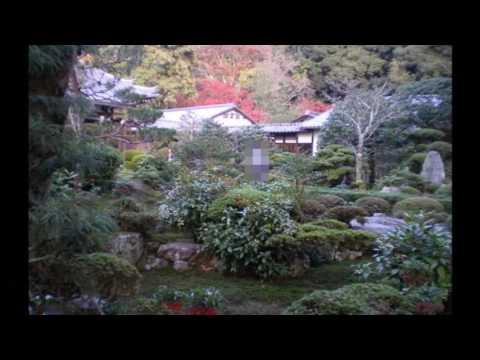 安楽寺 京都動画