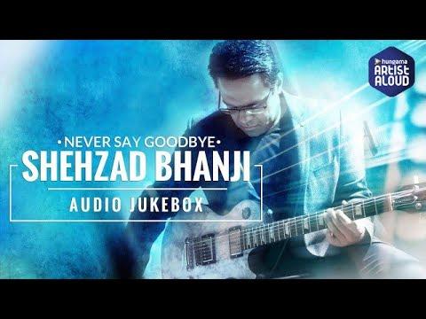 BEST ROCK SONGS 2016   SHEHZAD BHANJI   NEVER SAY GOODBYE  INSTRUMENTAL GUITAR   AUDIO JUKEBOX