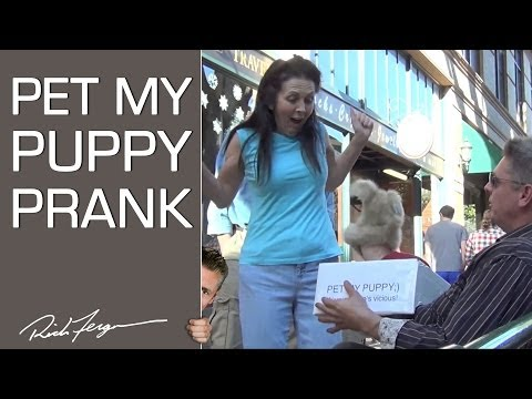 Wanna Pet My Puppy? (3rd Arm Scare Prank!)