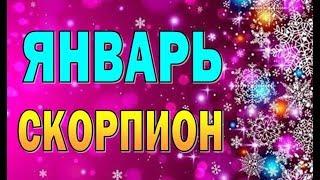Таро прогноз (гороскоп) на ЯНВАРЬ – СКОРПИОН