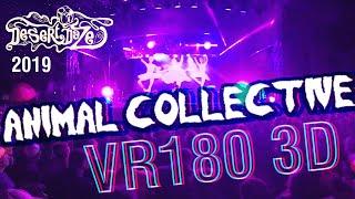 Animal Collective Live in 3D VR180 @ Desert Daze 2019