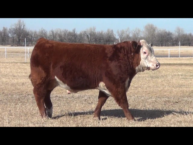 Express Ranches Lot 200