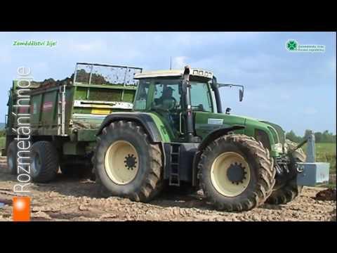Pěstování olejnin a obilovin