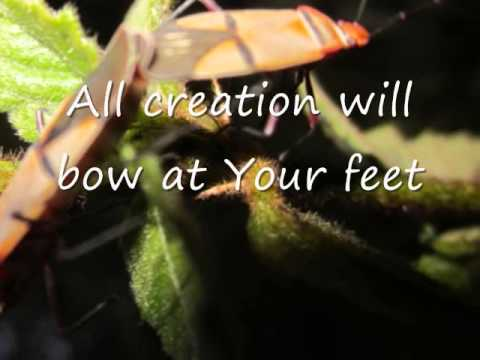 Kenyan local - All creation will bow