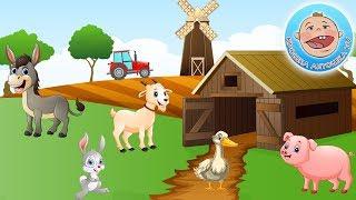 Домашние животные - Учим голоса животных - Развивающее видео для детей