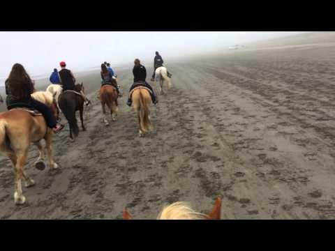 Horseback riding at Ocean Shores, WA