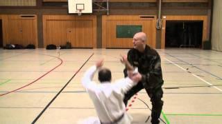 Kung Fu & Systema Spetsnaz  Russian Martial Art Vadim Starov thumbnail