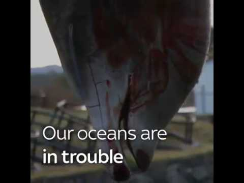 Save Ocean Campaign.