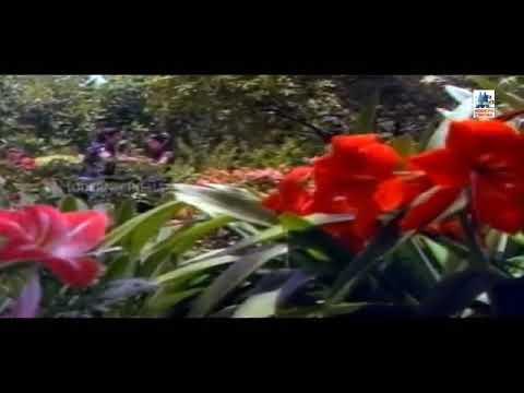 mayanginen solla thayanginen video song - Whatsapp status | Naane Raja Naane Mandhiri