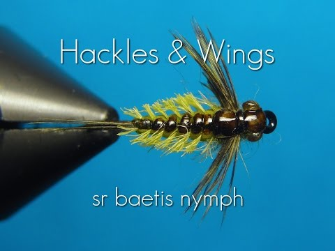 Fly Tying Baetis Nymph (SR) | Hackles & Wings