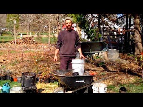 Permaculture Plant Potting