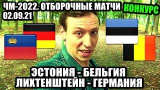 Эстония Бельгия прогноз Конкурс