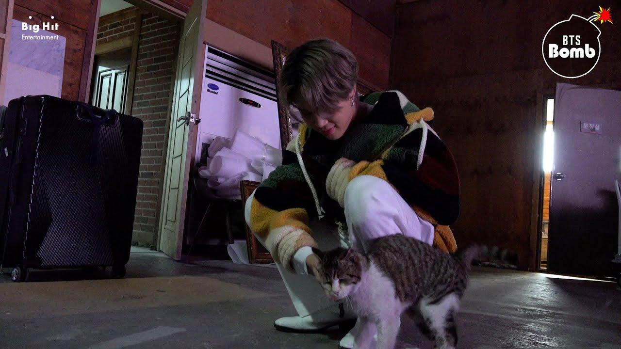 [BANGTAN BOMB] You Have a Meow-sitor! - BTS (방탄소년단)