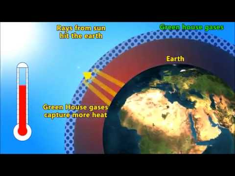 Homework help ozone depletion global warming