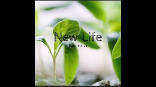 New Life / John 3: 1-21