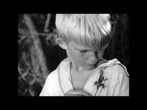 Голубятня на желтой поляне  Часть 3  Мальчик и ящерка  Аудиокнига