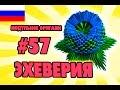 3D МОДУЛЬНОЕ ОРИГАМИ #57 ЭХЕВЕРИЯ - КАМЕННЫЙ ЦВЕТОК ПОДАРОК НА 8 МАРТА