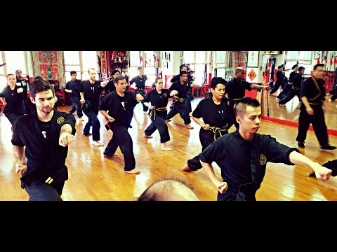 Bo Law Kung Fu Workout Live Stream