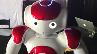 The MIT Happy Robot at the World Happiness Summit