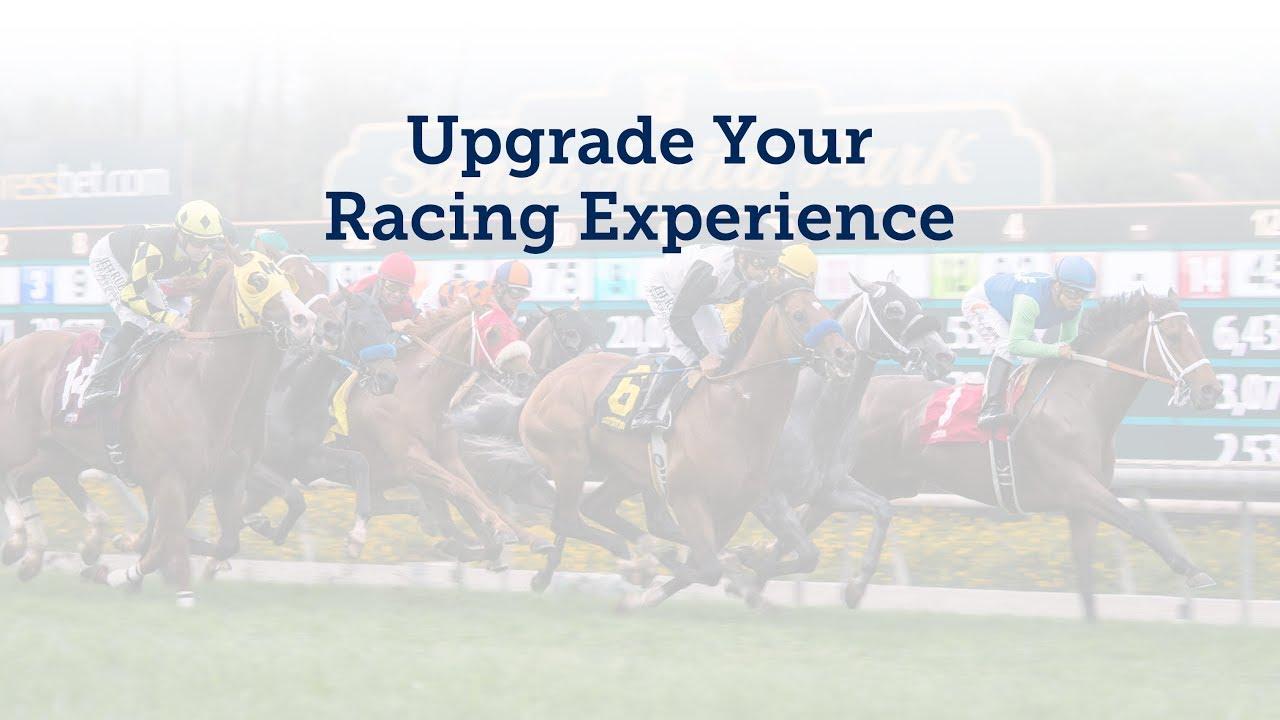 Bet Online Horse Racing | Xpressbet