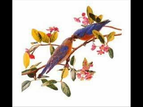 GABUID TRCHUN (Bluebird) remake -KUSAN - M. SATDJIAN