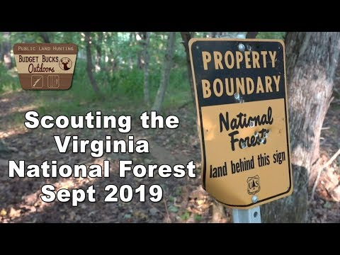 Scouting The George Washington National Forest Sept. 2019