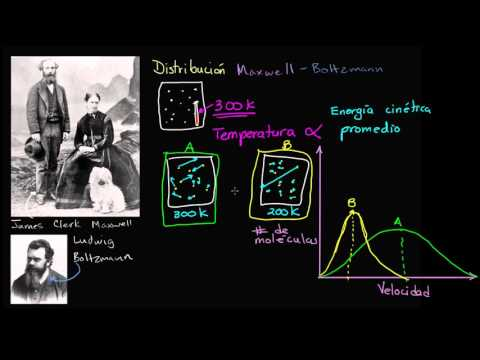 Distribución Maxwell Boltzmann | Termodinámica | Física | Khan Academy en Español