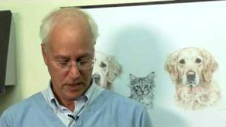 Bruce Fogle Gives Cat Owners Expert Tips On How To Avoid Going To The Vets