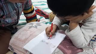 sadi Kids Color
