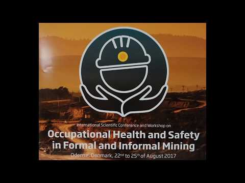 David Walters. Role of worker representation on occupational health and safety in coal mining.