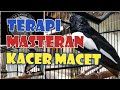 Terapi Kacer Gacor Pancingan Kacer Macet Bunyi  Mp3 - Mp4 Download