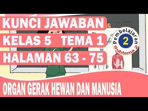 KUNCI JAWABAN TEMA 1 KELAS 5 SUBTEMA 2 PEMBELAJARAN 2 HALAMAN 63-75
