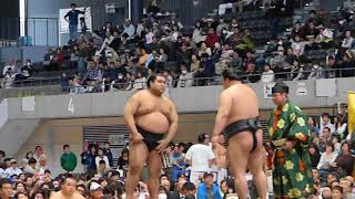oh my hero his win in sumo match his my philippine sumo idol.