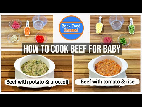 An introduction to Homemade Baby Food