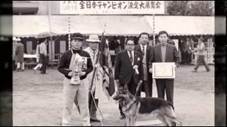 「パプラールの由来」 株式会社 東洋厚生製薬所 →http://www.toyokosei....