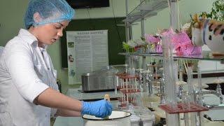 Изготовление плавленного сыра. Технологический факультет УрГАУ