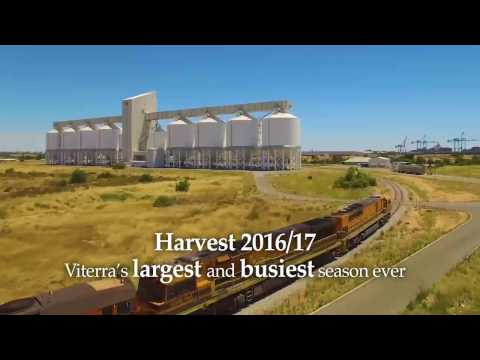 Record-breaking grain harvest in South Australia
